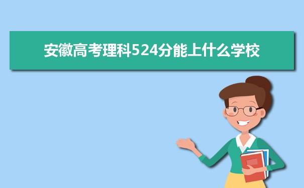 2021安徽高考理科524能上什么大学