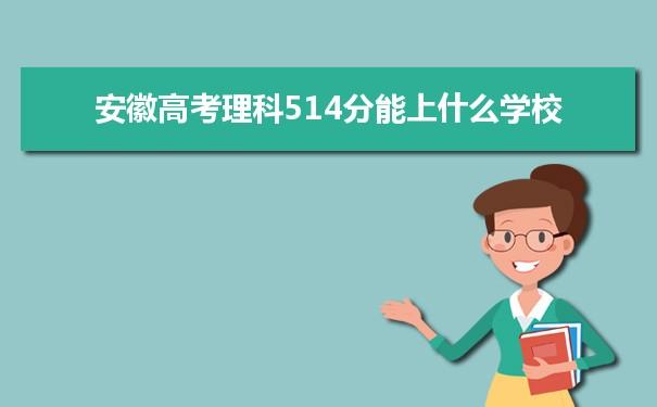 2021安徽高考理科514能上什么大学
