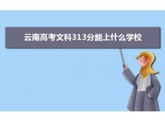 2021云南高考文科313分左右可以上什么大学?附能报考的20所大学