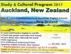 【国际交流】新西兰Dominion英语学校交流学习项目